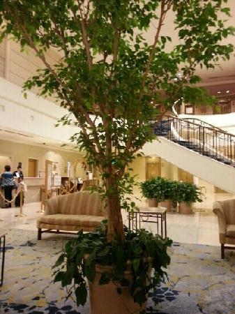 Hotel Century Shizuoka: 酒店大堂