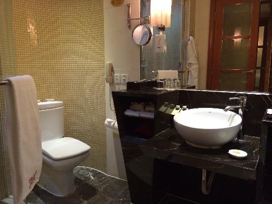 Guangxi Wharton International Hotel: 卫生间
