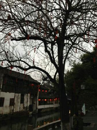 Zhouzhuang Fugui Park: 景点