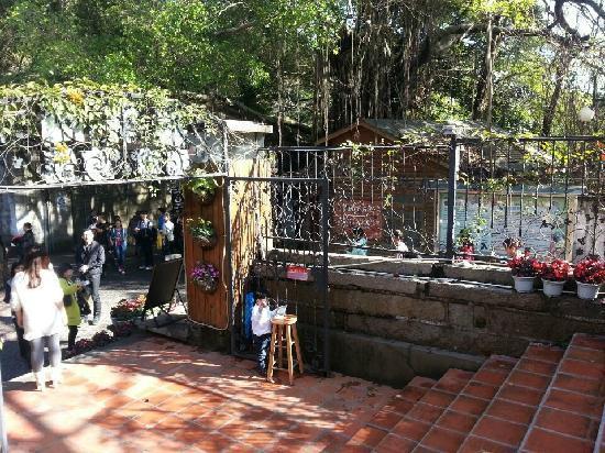 Gulangyu Xilinge Coffee Hostel: 位置的方便-出世入世都方便