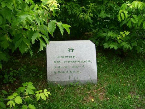 Dalian West Forest Park: psb(2)