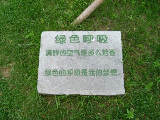 Dalian West Forest Park: psb(3)