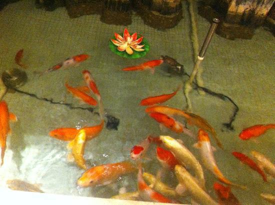 Yunhai Hotel : yuchi
