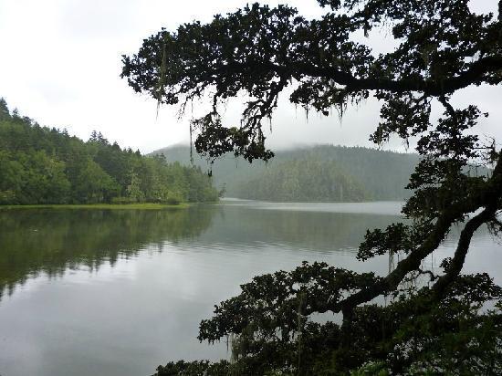 Potatso National Park: 普达措国家公园一景