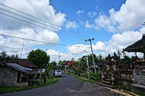 Bali On Bike: 小路