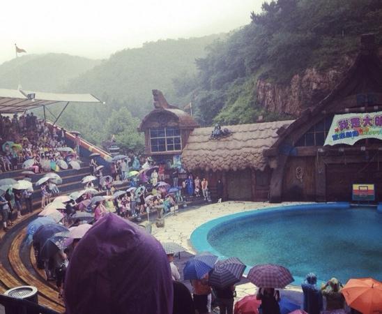Laohutan Scenic Park : 老虎滩海洋公园