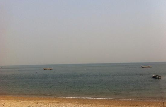 Bangchuidao Island: 棒棰岛