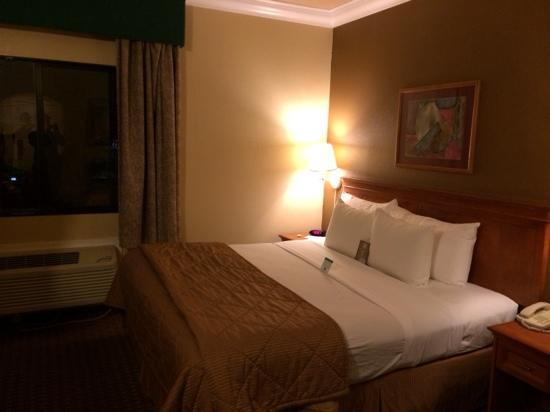 Comfort Inn & Suites San Francisco  Airport North: 免费shuttle方便