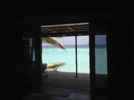 Gangehi Island Resort: 面朝大海