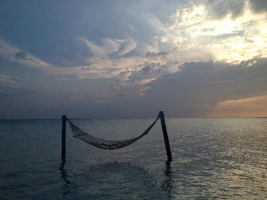 Gangehi Island Resort: 海上吊床