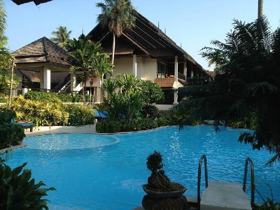 Phi Phi Banyan Villa: 泳池