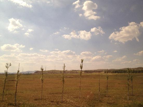 Fengning Bashang Grassland: 大草原