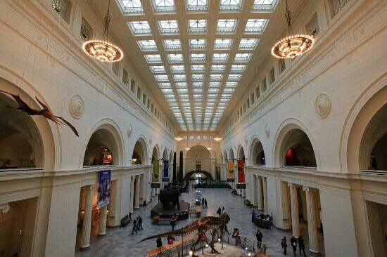 The Field Museum: 博物馆
