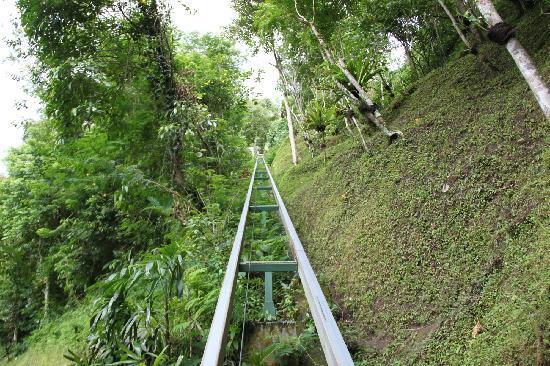 Hanging Gardens of Bali: Hanging Garden
