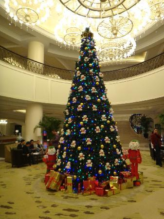 Sheraton Fuzhou Hotel: 大堂