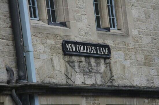 New College: 新学院