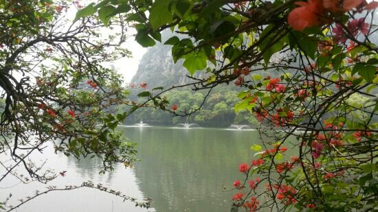 Xinghu Lake of Zhaoqing: 星湖風光