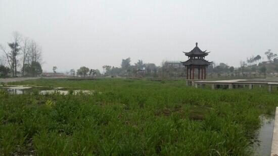 Lu County, China: 绿地!