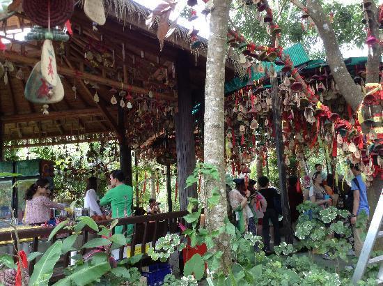Yanuo Tropical Rain Forest Resort : image