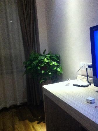 Super 8 Hotel Jinan Xi Shi Chang : 植物
