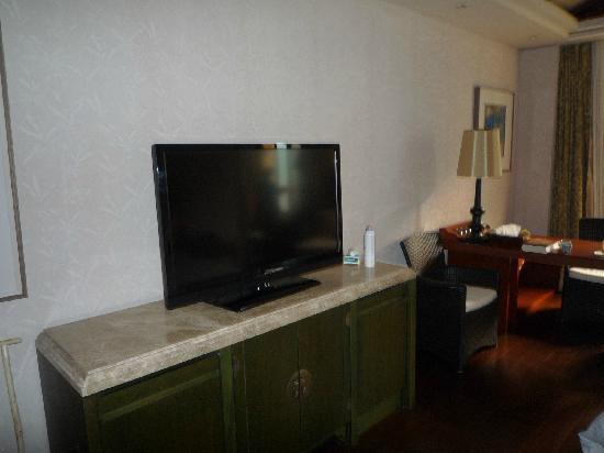 Sanqingshan International Holiday Hotel: 电视