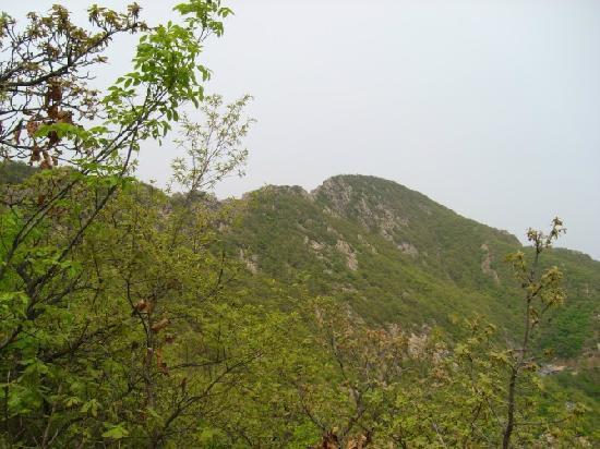 Grand Black Mountain of Dalian : 大黑山