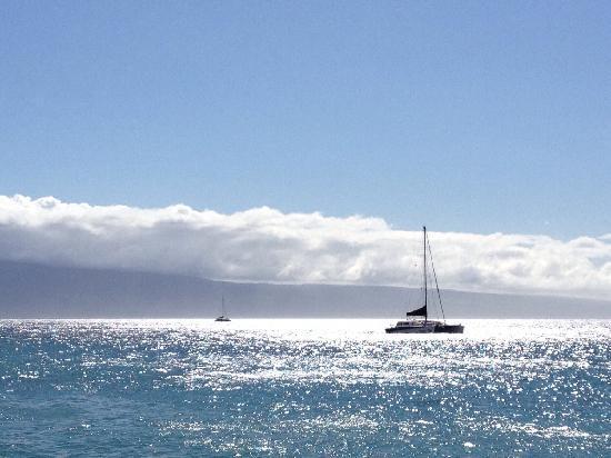 Kaanapali Beach Hotel: Maui岛很美的沙滩