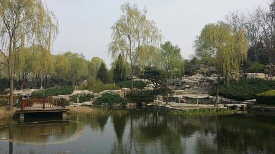 Haidian Park: 花红柳绿