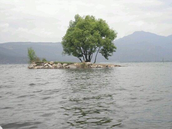 Lashi Lake : 拉市海