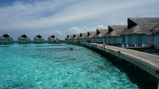 Centara Grand Island Resort & Spa Maldives : 夕阳水上屋