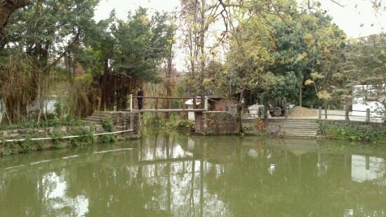 Xiaozhou Village : 小洲村