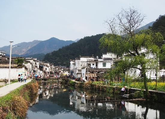 Wuyuan Rape Flower Scenic Spot: 理坑村口