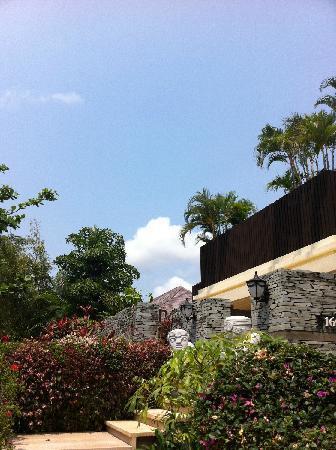 Yalong Bay Villas & Spa: 蓝蓝的天空绿绿的树~