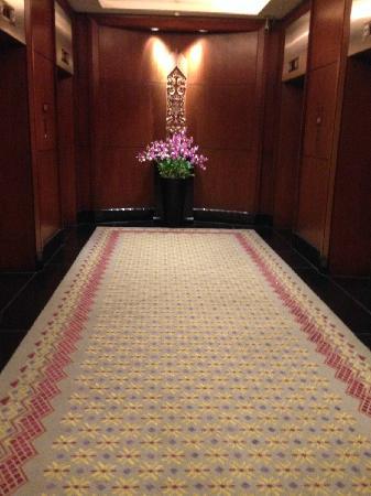 JW Marriott Hotel Bangkok: 电梯间