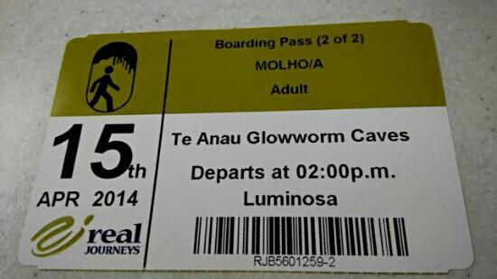 Te Anau Glowworm Caves: 门票