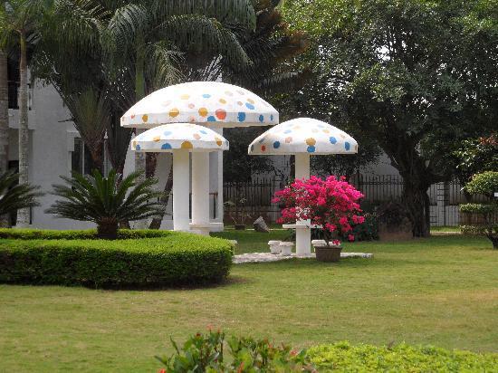 Zhenghao Hot Spring Villa: 鸟语花香的后花园
