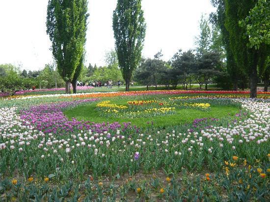 Beijing Botanical Garden : 植物园
