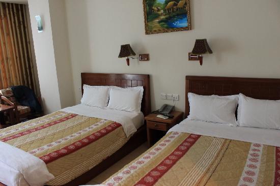 Hoang Hai (Golden Sea) Hotel : Twin beded
