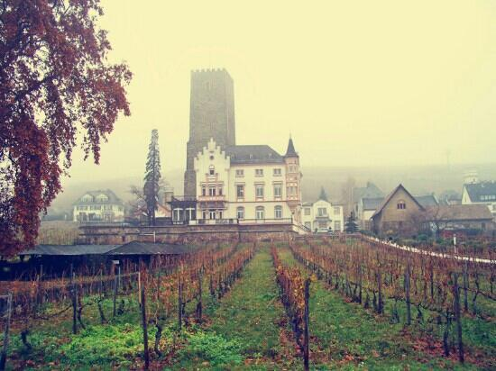 Drosselgasse : 葡萄架下的小城
