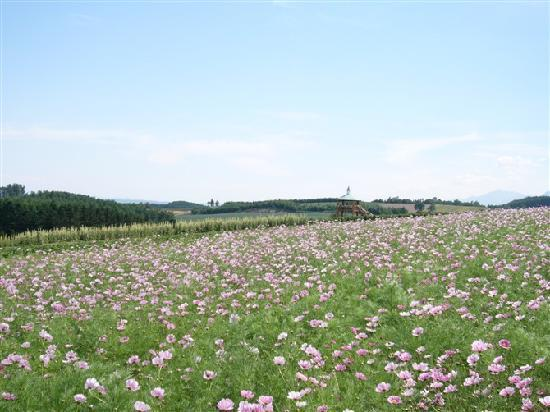 Historical Village of Hokkaido (Kaitaku-no Mura): 北海道开拓村