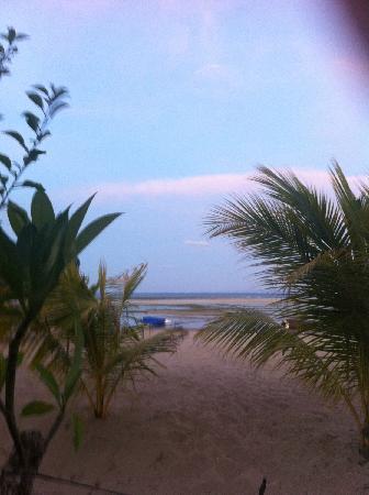 The Oasis Beach : 海滩