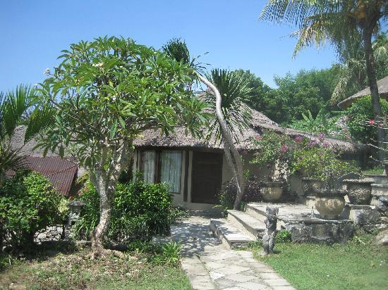 Coconuts Beach Resort: villa