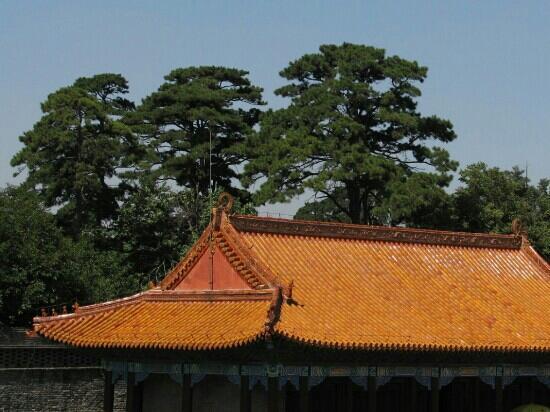 Beiling Park: 北陵公园