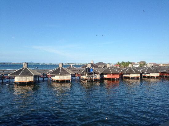 Ocean Treasure Live Seafood Restaurant: 景观