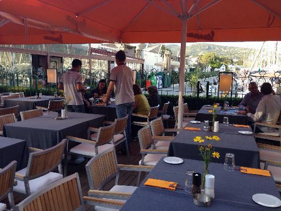 Marina Yacht Club Restaurant : Marina Yacht