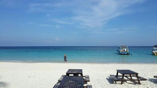 Gipsy Divers: 热浪岛真心美丽,我会一直记住这这里的日子!