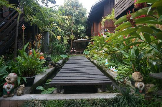 Chiang Mai Summer Resort: 一进门就可以看到这满眼的绿色