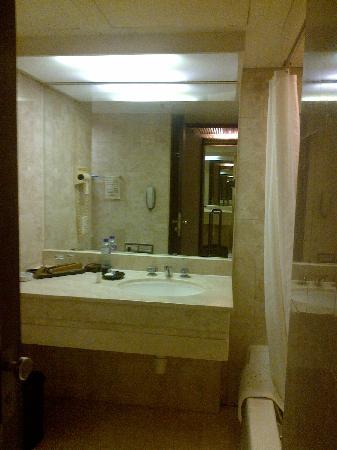 Regal Kowloon Hotel: 卫生间