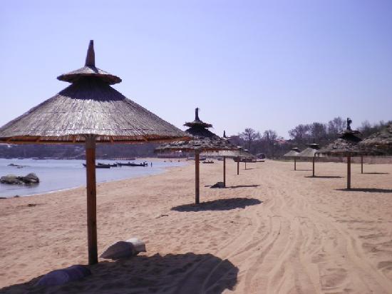 Pigeon Nest Park: 海边