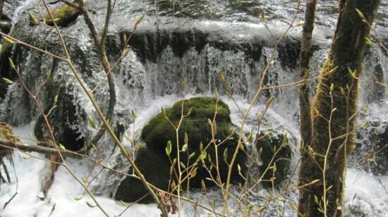 Erdaohai Lakes Scienc Spot: 二道沟里的小瀑布